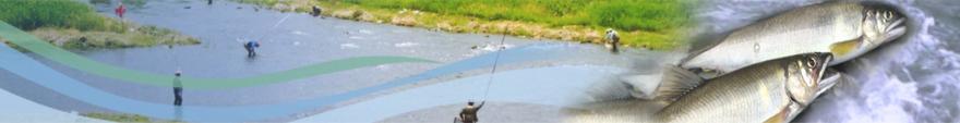 名張川漁業協同組合